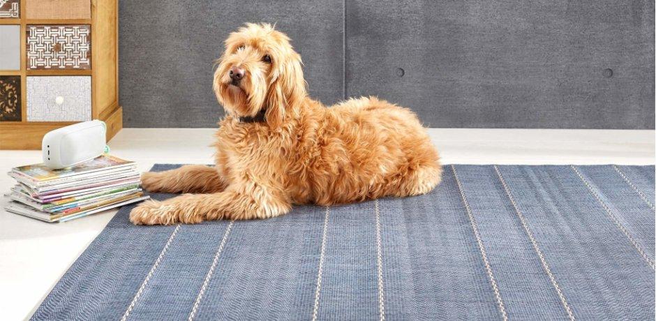 Wohnen - Teppiche - Flachgewebe-Teppiche