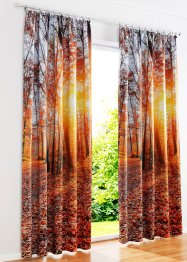 Verdunkelungsvorhang mit Wald Motiv (1er Pack), bpc living bonprix collection