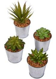 Kunstpflanzen Sukkulenten im Metalltopf (4-tlg.Set), bpc living bonprix collection