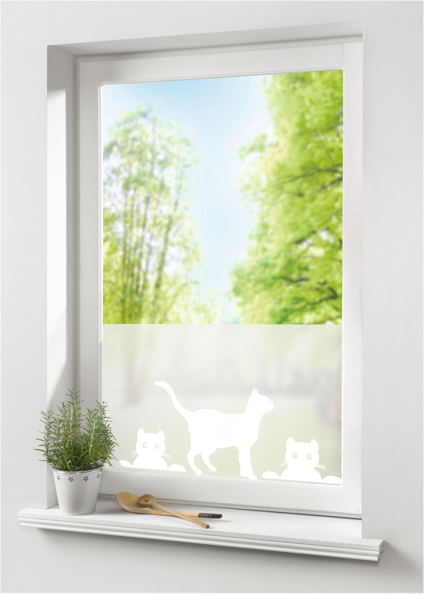 Fenster sichtschutzfolie g nstig kaufen for Fenster marken