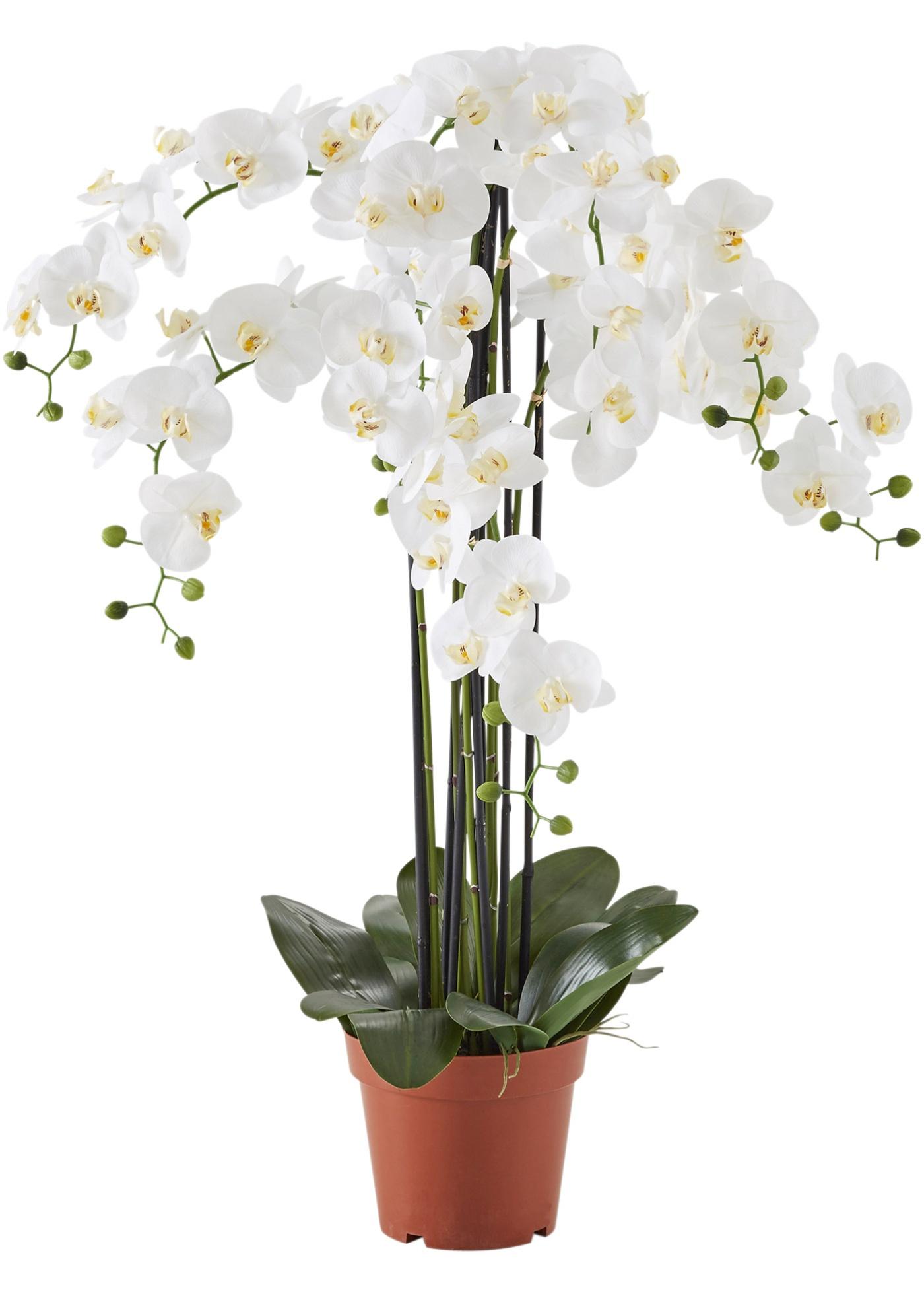 Kunstblume XXL Orchidee