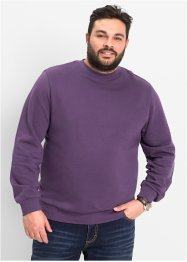 Herren Sweatshirt, Regular Fit, bpc bonprix collection, weinbeere