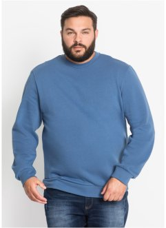Herren Sweatshirt, Regular Fit, bpc bonprix collection